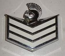 Buick Knight shield Emblem