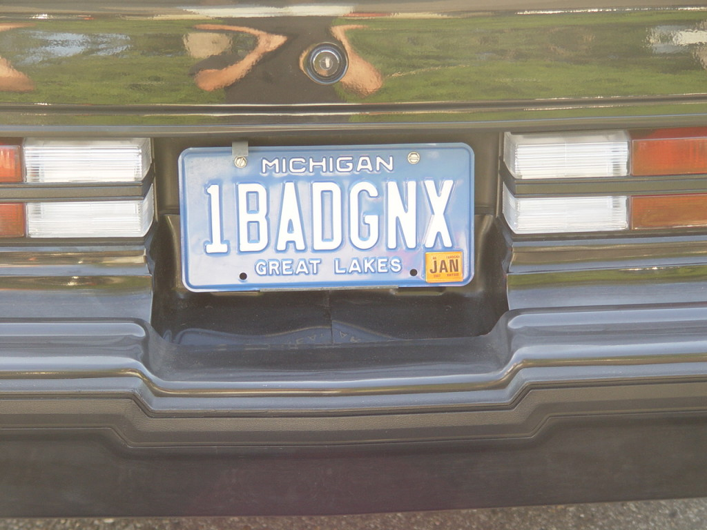 1 bad gnx plate