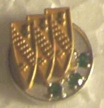 buick employee 20 year service pin