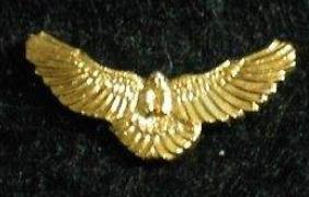 happy the hawk buick pin