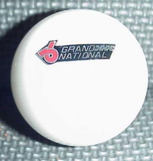 Buick Grand National white Custom Shift Knob