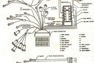 1987 lincoln continental engine wiring diagram with Buick Grand National Engine Diagram on Buick Grand National Engine Diagram besides 1979 Corvette Wiper Door Vacuum Diagram moreover Lincoln Town Car Fuel Pump Relay also 1978 F150 Engine Diagram further 1989 Ford 460 Vacuum Diagram.