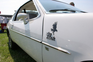 buick skyhawk hawk decal 2