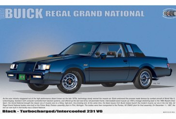 More Buick Grand National Posters