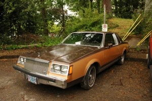1981 Buick Regal Limited Edition Somerset