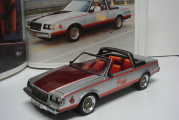 1981 Indy 500 Buick Regal Pace Car Model