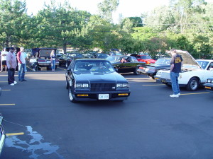 buick gnx 418