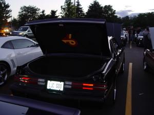 trunk pad