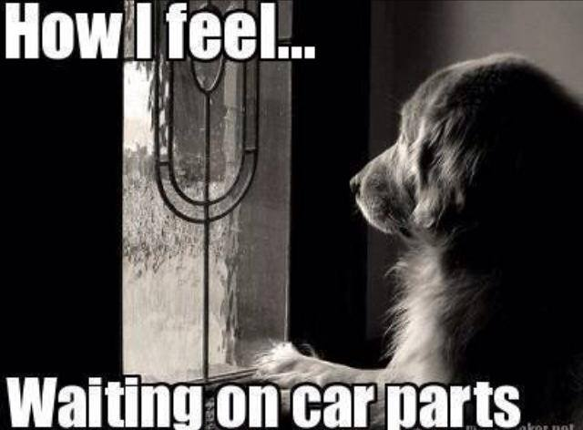 waiting for car parts