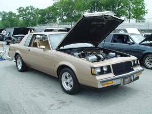chestnut turbo t