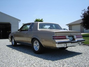 light brown turbo t