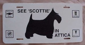 scottie buick license plate