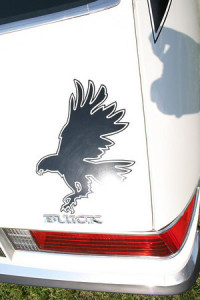 skyhawk hawk decal