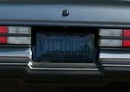 vicious 6