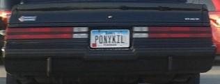 pony killer