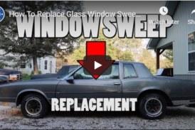 Door Glass Window Sweeps Replacement (video)