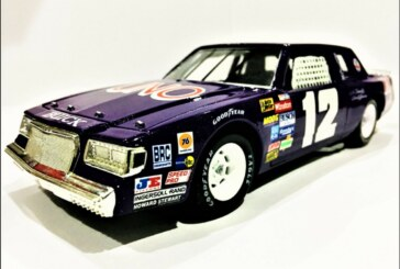 Custom Made 1981 Buick Regal Winston Cup Series 1:24 Diecast Cars