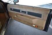 Changing Lower Door Panel Courtesy Warning Lights Bulbs (Regal Limited Post 25 of 27)