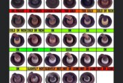 Reading Spark Plugs Picture Chart